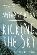 Kicking_The_Sky