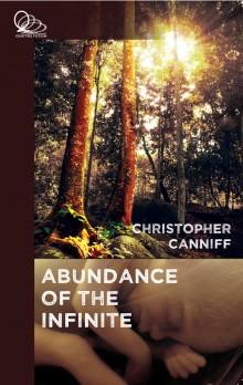 Book Cover: Abundance of the Infinite